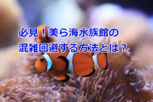 美ら海水族館の混雑回避とお得情報とは?