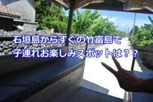 子連れで竹富島に行くなら、おすすめはコレ!