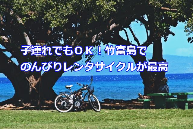 子連れでもOK!竹富島でのんびりレンタルサイクルが最高
