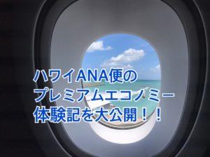 ANAハワイ便プレミアムエコノミーの機内食を体験。子供用は?