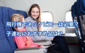 飛行機でネックピローはいらない?不要?