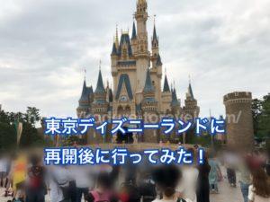 東京ディズニーランド再開後の子連れブログ